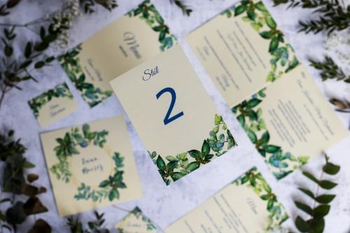 numer-stolu-eukaliptus-robusta