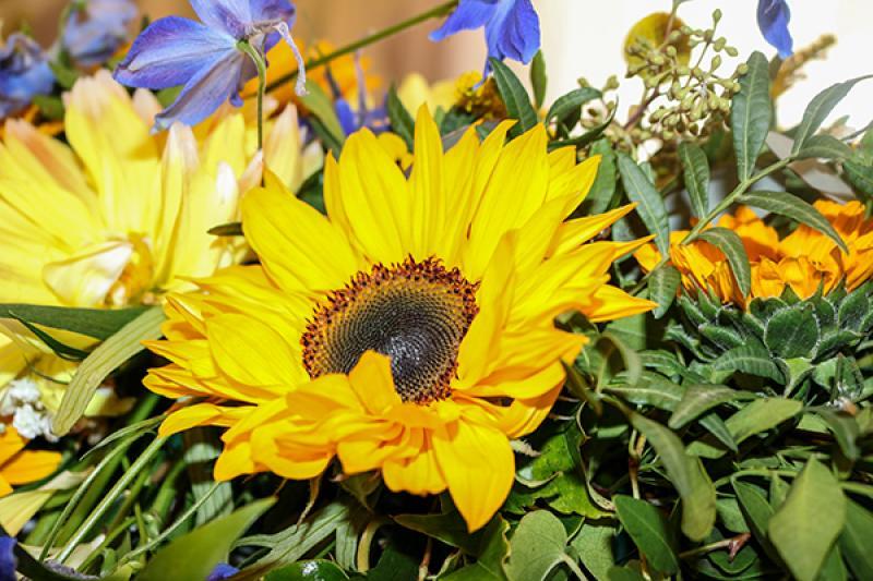 słoneczniki dekoracja młodych warszawa